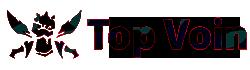 TopVoin - журнал для настоящего война